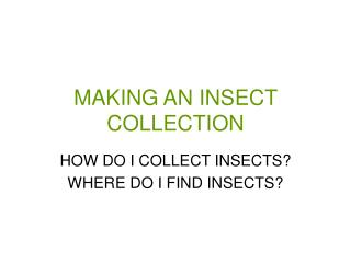 MAKING AN INSECT COLLECTION