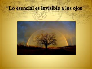 """"""" Lo esencial es invisible a los ojos """""""