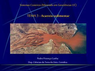 Sistemas Costeiros (Mestrado em Geociências UC) TEMA 5 -  Acarreio sedimentar