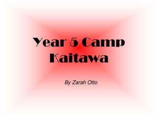 Year 5 Camp Kaitawa