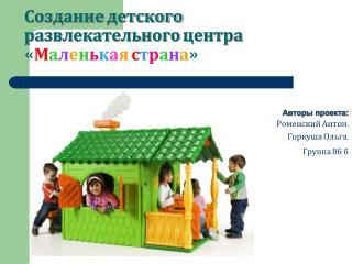 Создание детского развлекательного центра  « М а л е н ь к а я с т р а н а »
