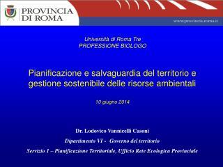 Dr. Lodovico Vannicelli Casoni Dipartimento VI  -  Governo del territorio