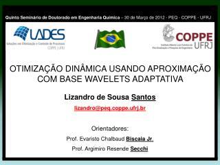 Lizandro de Sousa  Santos lizandro@peq.coppe.ufrj.br Orientadores: