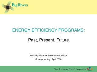 ENERGY EFFICIENCY PROGRAMS: