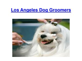 Los Angeles Dog Groomers