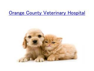 Orange County Veterinary Hospital