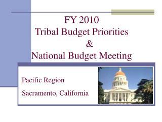 FY 2010 Tribal Budget Priorities  & National Budget Meeting