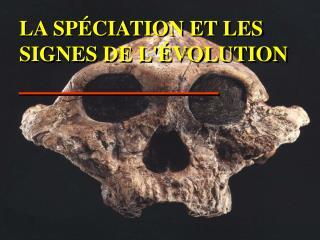 LA SP CIATION ET LES SIGNES DE L VOLUTION