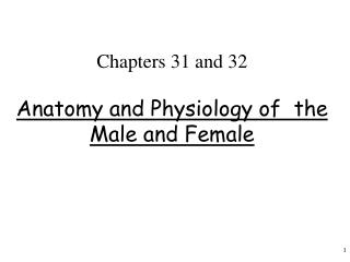 Chapters 31 and 32  Anatomy and Physiology of  the Male and Female