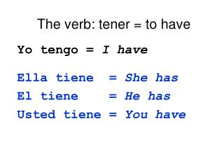 The verb: tener  to have