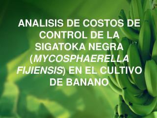 INTEGRANTES: Miguel Angel Yagual Pazmi ñ o . Gerardo Emilio Frias Flores.
