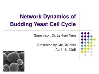 Network Dynamics of Budding Yeast Cell Cycle