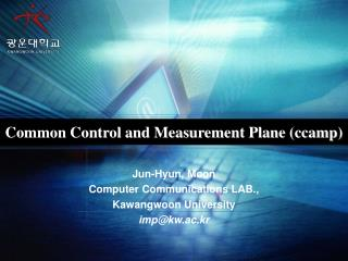Common Control and Measurement Plane (ccamp)