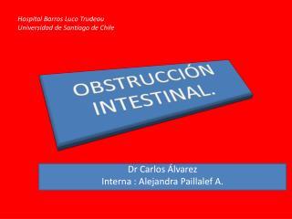 Dr  Carlos �lvarez Interna  : Alejandra  Paillalef  A.