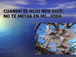 CUANDO EL HIJO NOS DICE:  NO TE METAS EN MI�VIDA
