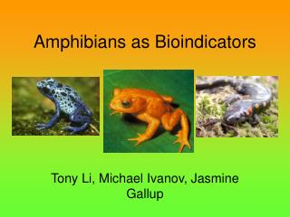 Amphibians as Bioindicators