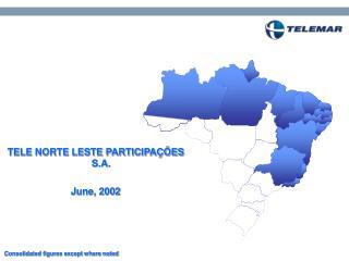 TELE NORTE LESTE PARTICIPAÇÕES S.A. June, 2002
