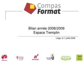 Bilan année 2008/2009 Espace Tremplin