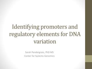 Identifying  promoters and regulatory elements  for  DNA  variation