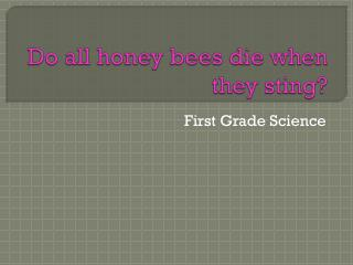 Do all honey bees die when they sting?