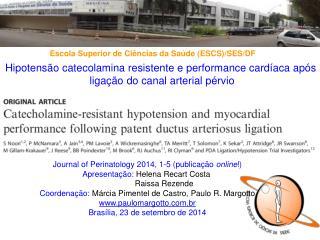 Hipotensão catecolamina resistente e performance cardíaca após  ligação do canal arterial pérvio