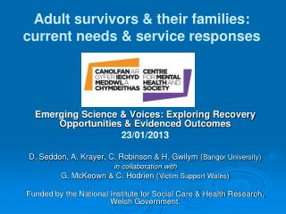 Adult survivors & their families: current needs & service responses