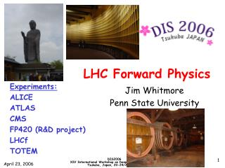 LHC Forward Physics