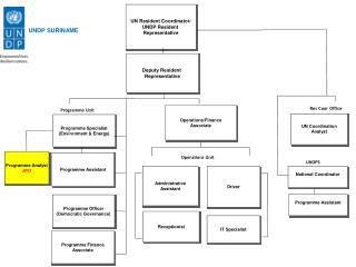 UNDP SURINAME