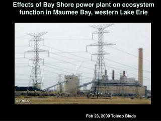 Effects of Bay Shore power plant on ecosystem function in Maumee Bay, western Lake Erie