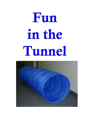 Fun  in the  Tunnel