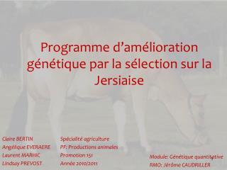 Programme d'amélioration génétique par la sélection sur la Jersiaise