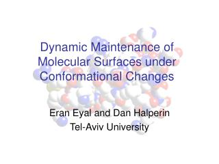 Dynamic Maintenance of Molecular Surfaces under Conformational Changes