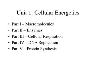 Unit 1: Cellular Energetics