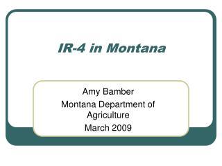 IR-4 in Montana