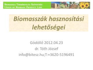Biomasszák hasznosítási lehetőségei