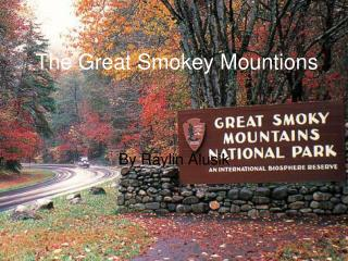 The Great Smokey Mountions