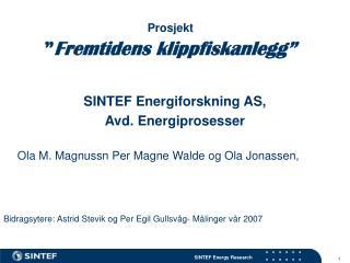 """Prosjekt """" Fremtidens klippfiskanlegg"""""""
