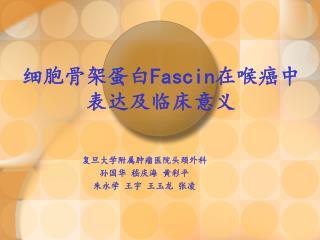 细胞骨架蛋白 Fascin 在喉癌中表达及临床意义