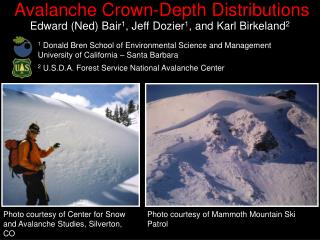 Avalanche Crown-Depth Distributions