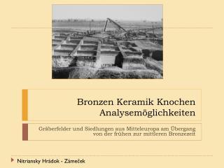 Bronzen Keramik Knochen  Analysemöglichkeiten