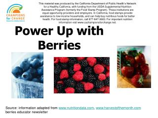 Power Up with Berries