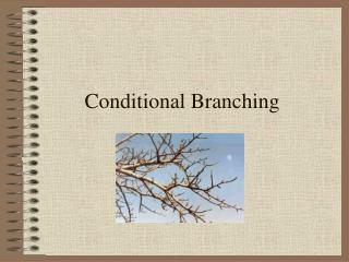 Conditional Branching