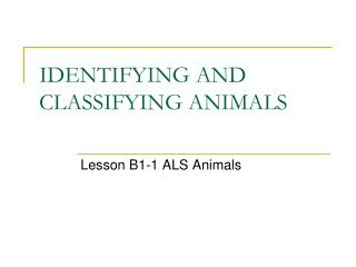 IDENTIFYING AND CLASSIFYING ANIMALS