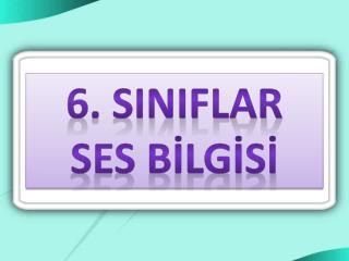6. SINIFLAR SES B?LG?S?