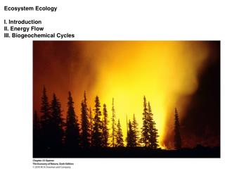 Ecosystem Ecology I. Introduction II. Energy Flow III. Biogeochemical Cycles
