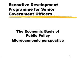 Executive Development Programme for Senior Government Officers