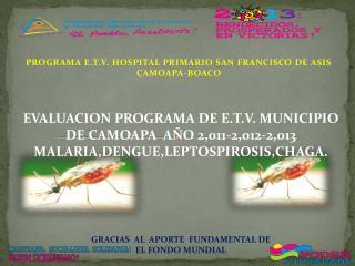 PROGRAMA E.T.V. HOSPITAL PRIMARIO SAN FRANCISCO DE ASIS    CAMOAPA-BOACO