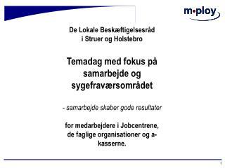 De Lokale Beskæftigelsesråd i Struer og Holstebro Temadag med fokus på