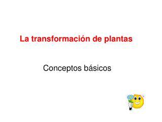 La transformaci�n de plantas  Conceptos b�sicos