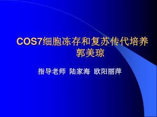 COS7 细胞冻存和复苏传代培养 郭美琼